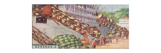 'Bananas 2. - Loading a Steamship, Costa Rica', 1928-Unknown-Giclee Print