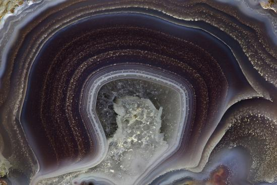 Banded Agate, Quartzsite, AZ-Darrell Gulin-Photographic Print