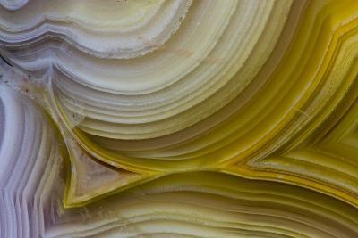 Banded Agate, Sammamish, Washington State-Darrell Gulin-Photographic Print