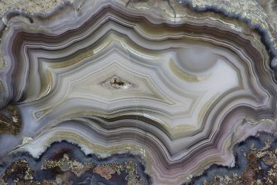 Banded Mexican Agate, Sammamish, WA-Darrell Gulin-Photographic Print