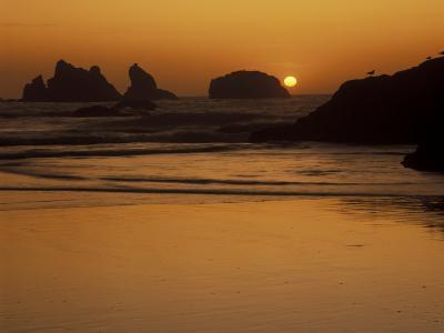 Bandon Beach with Mirrored Seastack Reflections, Oregon, USA-Adam Jones-Photographic Print
