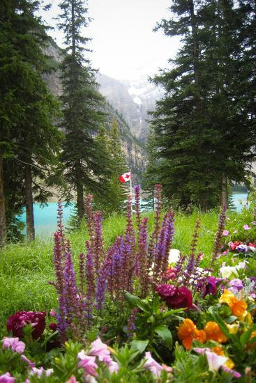 Banff Flowers In National Park Nature Photo Poster--Poster