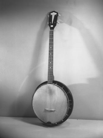 https://imgc.artprintimages.com/img/print/banjo_u-l-q10bw710.jpg?p=0