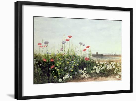 Bank of Summer Flowers-Andrew Nicholl-Framed Giclee Print
