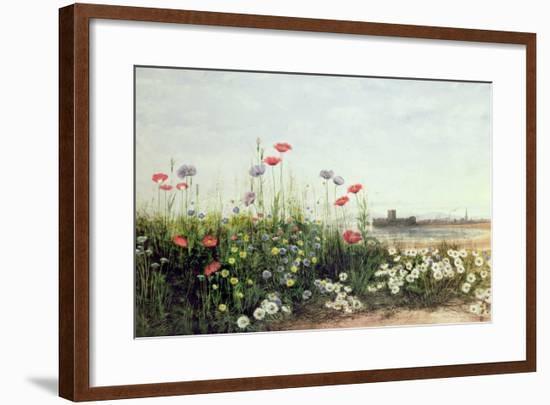 Bank of Summer Flowers-Andrew Nicholl-Framed Giclee Print