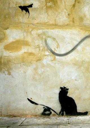Cat by Banksy