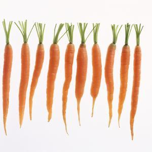 Fresh Carrots by Barbara Bonisolli