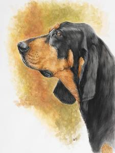 Black and Tan CoonHound by Barbara Keith