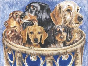 Dachsund in a Basket by Barbara Keith