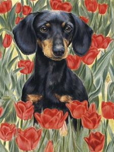 Dachsund in Tulips by Barbara Keith