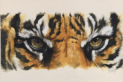 Eye-Catching Tiger
