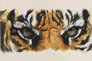 Eye-Catching Tiger by Barbara Keith