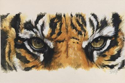 Eye-Catching Tiger