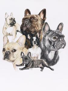 French Bulldog by Barbara Keith