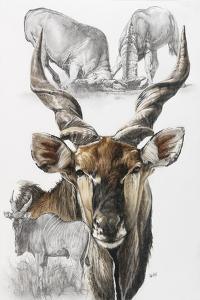 Giant Eland by Barbara Keith
