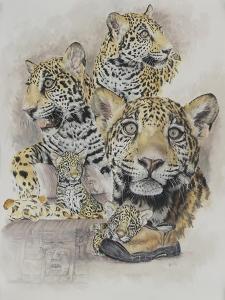 Jaguars by Barbara Keith