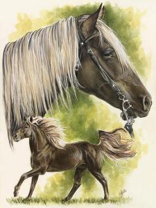 Rocky Mountain Horse by Barbara Keith