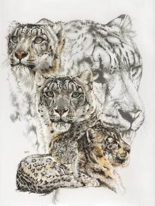 Snow Leopard and Ghost Image by Barbara Keith