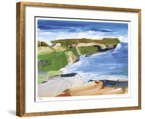 Ocean Cliffs by Barbara Rainforth