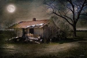 Forgotten in Moonlight by Barbara Simmons