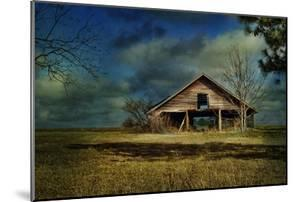 Hwy82 Barn by Barbara Simmons
