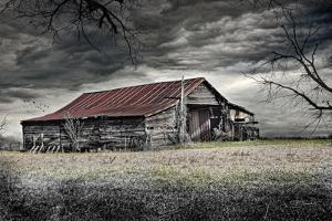 Storm Barn by Barbara Simmons