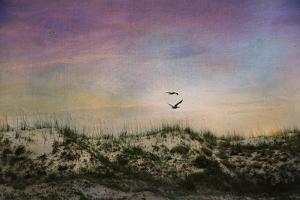 Wings of Dawn by Barbara Simmons
