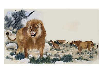 Barbary Lions-Maurice Wilson-Giclee Print