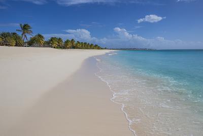 Barbuda, Antigua and Barbuda, Leeward Islands, West Indies-Roberto Moiola-Photographic Print