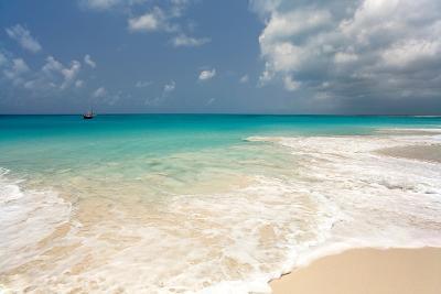 Barbuda Beach, Caribbean-Susan Degginger-Photographic Print