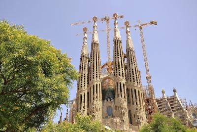 Barcelona, Sagrada Familia-Stefano Salvetti-Photographic Print