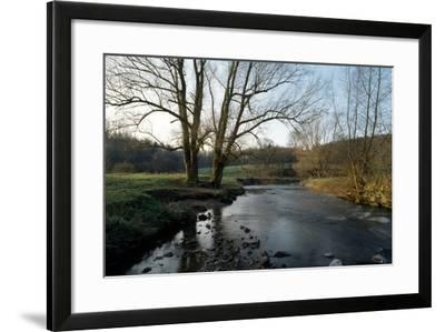 Bare Trees and River at Wurselen- Bardenberg,Wurmtal - Germany-Florian Monheim-Framed Photographic Print