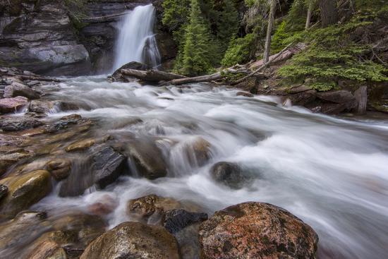 Baring Falls in Glacier National Park, Montana, USA-Chuck Haney-Photographic Print