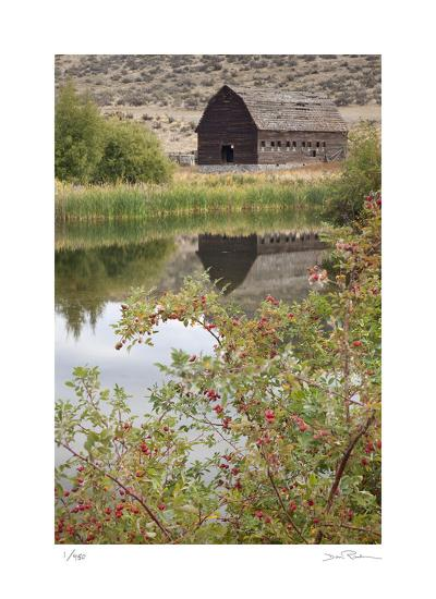 Barn and Pond-Donald Paulson-Giclee Print