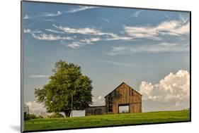 Barn in afternoon light, Kentucky-Adam Jones-Mounted Photographic Print