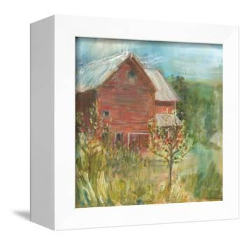 Barn Orchard-Sue Schlabach-Framed Stretched Canvas