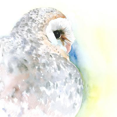 Barn Owl Portrait-Suren Nersisyan-Art Print