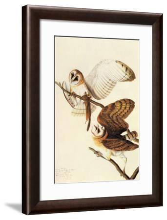 Barn Owl-John James Audubon-Framed Art Print