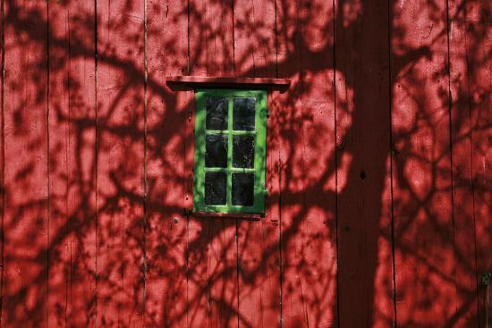 Barn, Red, Green Window, Shadow of a Tree-Uwe Steffens-Photographic Print