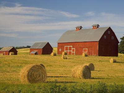 Barns and Hay Bales in Field-Darrell Gulin-Photographic Print