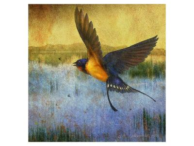 Barnswallow-Chris Vest-Art Print