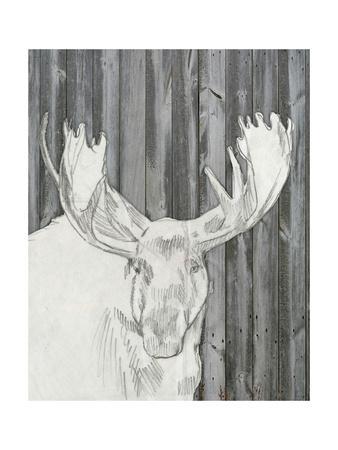 Barnwood Lodge Sketch II-Jennifer Goldberger-Art Print