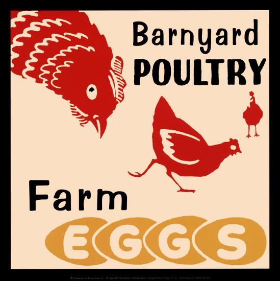 Barnyard Poultry-Farm Eggs--Art Print