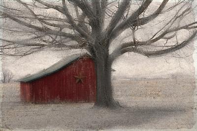 https://imgc.artprintimages.com/img/print/barnyard-star_u-l-q1bc3jl0.jpg?p=0