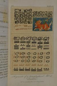 T.1605 Fragments of a Hieroglyphical Manuscript at Dresden, from Vol II of 'Researches Concerning… by Baron Von Humboldt Friedrich Alexander