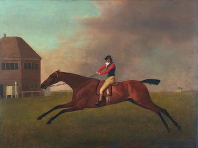 Baronet with Sam Chifney Up, 1791-George Stubbs-Giclee Print