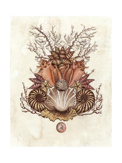 Baroque Nautilus II-Naomi McCavitt-Art Print