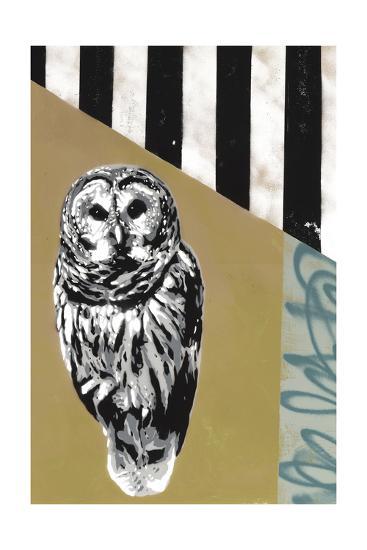 Barred Owl - Recolor-Urban Soule-Premium Giclee Print