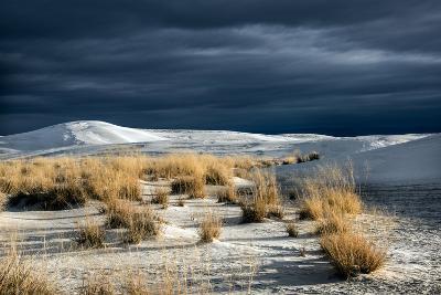 Barren Desert Landscape with Grasses under a Blue Sky-Jody Miller-Photographic Print