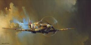 Spitfire by Barrie A F Clark